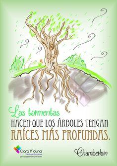 Las tormentas hacen que los arboles tengan raices mas profundas.