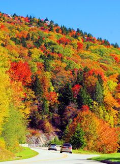 Fall color on the Blue Ridge Parkway in North Carolina