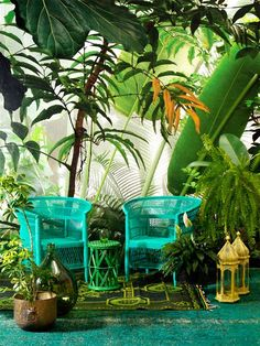 Big leafy plants bring the tropical jungle to you in this outdoor living area Tropical Home Decor, Tropical Interior, Tropical Design, Tropical Style, Tropical Vibes, Tropical Houses, Tropical Furniture, Tropical Colors, Estilo Tropical