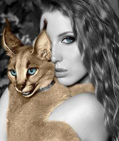 Cat Woman | ~LadyLuxury~
