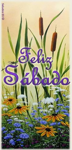 Sábado Saturday Quotes, Morning Greeting, Happy Weekend, Good Morning, Cards, Inspiration, Rey, Bella, Good Morning Wishes
