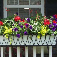 Best Of Balcony Railing Flower Baskets