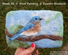 "Eastern Bluebird - Needle Felted Wool ""Painting"" -  Fiber Art  (no actual paint used--this is all wool!)"