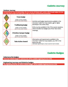 cadette first aid badge requirements pdf