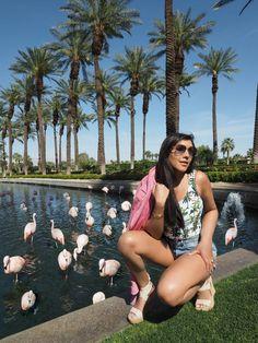 bonnie rakhit flamingos and jw marriot hotel palm springs Festival One, Coachella Festival, Joshua Tree National Park, National Parks, Bohemian Hotel, Travel Expert, Visit California, Swim Club, Palm Springs