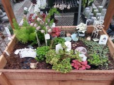 Visit Your Local Garden Store | Succulents | Pinterest | Hill Garden,  Gardens And Plants