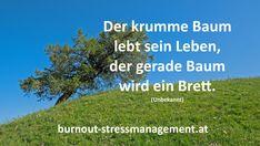 Wer sich nicht immer beweisen will, kann seinen Stress reduzieren und ein entspanntes Leben führen!