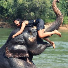 Swimming with elephants in Thailand is a bucket list must! Check it off at the Pattaya Elephant Village in Bangkok (Laem Chabang), Thailand.