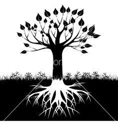 Tree roots silhouette vector 1219544 - by AndrijaMarkovic on VectorStock®