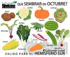 qué sembrar en octubre