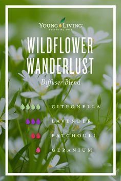 Wildflower wanderlust essential oil diffuser blend