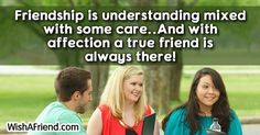 Friendship is understanding mixed with