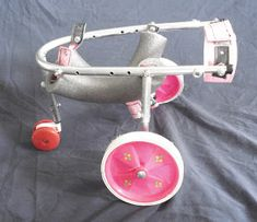 Diy Dog Wheelchair, Veterinary Medicine, Homemade Dog, Guinea Pigs, Dog Toys, Dog Lovers, Dog Cat, Kitten, Projects To Try