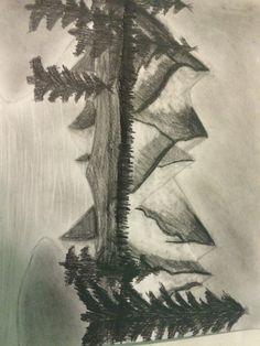 My first charcoal drawing and first mountain drawing hope I did well it took me a long time