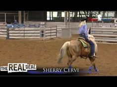 Here's a great video of World Champion Sherry Cervi riding Dinero. This video is from The Classic Real Deal.