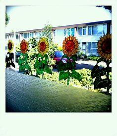 Window painting zonnebloemen