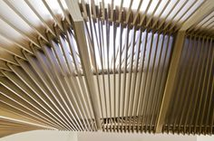 Joukowsky Institute, Anmahian Winton Architects. #texture #timber