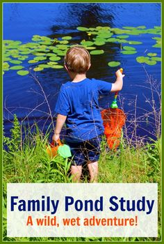Family Pond Study: A Wild, Wet Adventure!