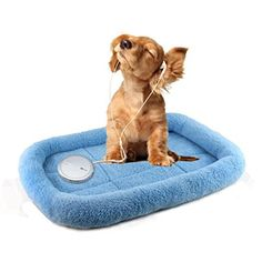 Pet BedHaoricu Dog Blanket Pet Cushion Dog Cat Bed Soft Warm Sleep Mat Blue -- Check out this great product.