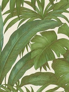 Versace on the floor <3  #palmleaves #wallpaper #style #fashion #decor #affiliate