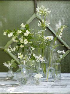 Vita blommor i en skir samling klara vaser och flaskor blir tillsammans ett fylligt arrangemang. Sch... Green is a trend for 2013.