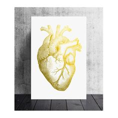 20x30 inch gold foiled anatomical heart ideal by PrintsOfHeart, £28.00