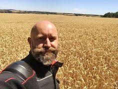 Bald With Beard, Bald Men, Male Pattern Baldness, Hair Loss, Human Body, Female, Beards, Beautiful, Bald Head With Beard