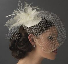 Elegant hairstyle with birdcage veil