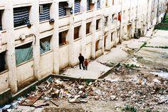 L'Algérie de Marie Pancrazi