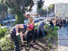 San Francisco aprova lei que diminui os impostos dos terrenos baldios que possuem hortas comunitárias
