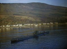 HMS Seadog (P216)  Laid down: 31 December 1940  Launched: 11 June 1942  Commissioned: 24 September 1942  Fate: sold 24 December 1947, broken up August 1948