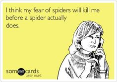 I think my fear of spiders will kill me before a spider actually does.