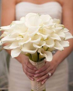 Pela sua cor branca, a flor copo de leite significa pureza, paz, tranquilidade e calma. �� É uma flor bela e graciosa, que ilumina e enche de alegria qualquer ambiente.�� #buquedenoiva #buquê #buquês #copodeleite #florcopodeleite #amor #noiva #flores #amor #buquelindo #inspiracao #tendencia #buquedeflores #buquêdanoiva #tendencia #pureza #paz #tranquilidade #calma #flores #floresbrancas #flor #decor #casamento #casar2018 #casar2017 #bride #weddingdress #wedding #flowers #flowerbride…