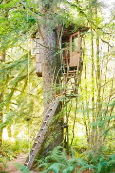 Treehouse Point //Seattle, Washington *Honeymoon