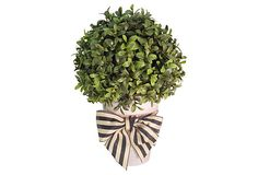 "11"" Boxwood Ball in Pot w/ Bow on OneKingsLane.com"