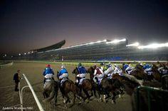 Racing at Meydan