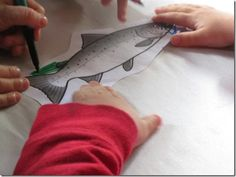 Learn all about the salmon of Washington State!