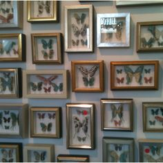 Paper butterfly shadow boxes