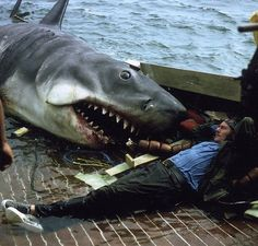 """Robert Shaw & Bruce (the shark) taking a break on the set of """"Jaws."""" Robert Shaw: """"So how do you want to play this scene?"""" Bruce: """"Um...how about I shake you from side to side a bit, then bite down really hard and puncture a lung?"""" Robert Shaw: """"Works for me."""" ;)"""