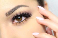 Anastasia Beverly Hills Artist Palette Brown Smokey Eyes with Pop of Ora...