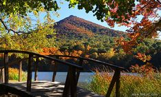 Peaks of Otter in Bedford, Virginia. Many hiking trails, picnic grounds, and waterfalls - love this place Oh The Places You'll Go, Great Places, Beautiful Places, Blue Ridge Parkway, Blue Ridge Mountains, Roanoke Virginia, West Virginia, Bedford Va, Bedford Virginia