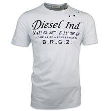 Diesel T-Coordinates Tee - White