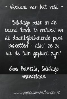 Kort verhaal over zomerbloemen. Quote Solidago veredelaar.    This quote courtesy of @Pinstamatic (http://pinstamatic.com)
