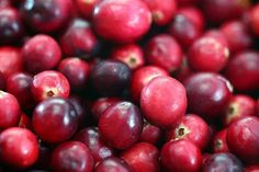 Cranberries are an excellent source of vitamin C, A, and beta carotene. They are packed with antioxidants and rate very high on the ORAC scale making it an ideal anti-aging and memory enhancing food. Cranberries have amazing anti-inflammatory and anti-cancer properties and are a vital food and supplement for anyone struggling with any chronic illness or disease. They are known to significantly boost the immune system and have a natural antibiotic effect in the body.