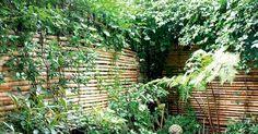 Un jardin comme une jungle - Marie Claire Maison