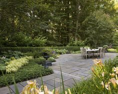 Backyard forest edge bushes to prevent forest creep and create separation from forest and lawn/yard.