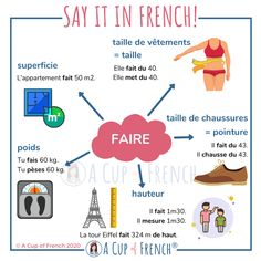 French Verbs, French Grammar, French Phrases, French Language Lessons, French Language Learning, French Lessons, Spanish Lessons, French Basics, French Flashcards