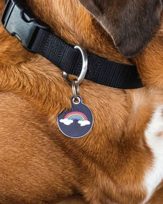 More LOVE #Pride . Your pup's personality can't be contained! We've got 100s of pet ID tags to choose from at Dog Tag Art so they can express themselves.