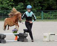 Katie and Her Amazing Flying Mini-Horse