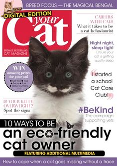 Your Cat Magazine Subscription UK Offer Animal Magazines, Magazines For Kids, Men's Magazines, Cat Magazine, Magazine Covers, Cat Hacks, Cat Sitter, School Treats, Hobbies And Interests